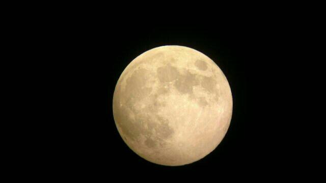 皮埃尔摘月亮读后感
