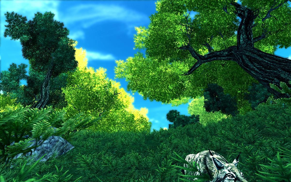 唯美田园自然风景桌面壁纸令你置身浪漫花海 山水图片