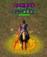 武林亚军1.jpg
