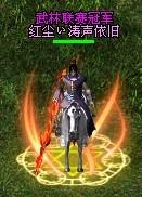 武林冠军2.jpg