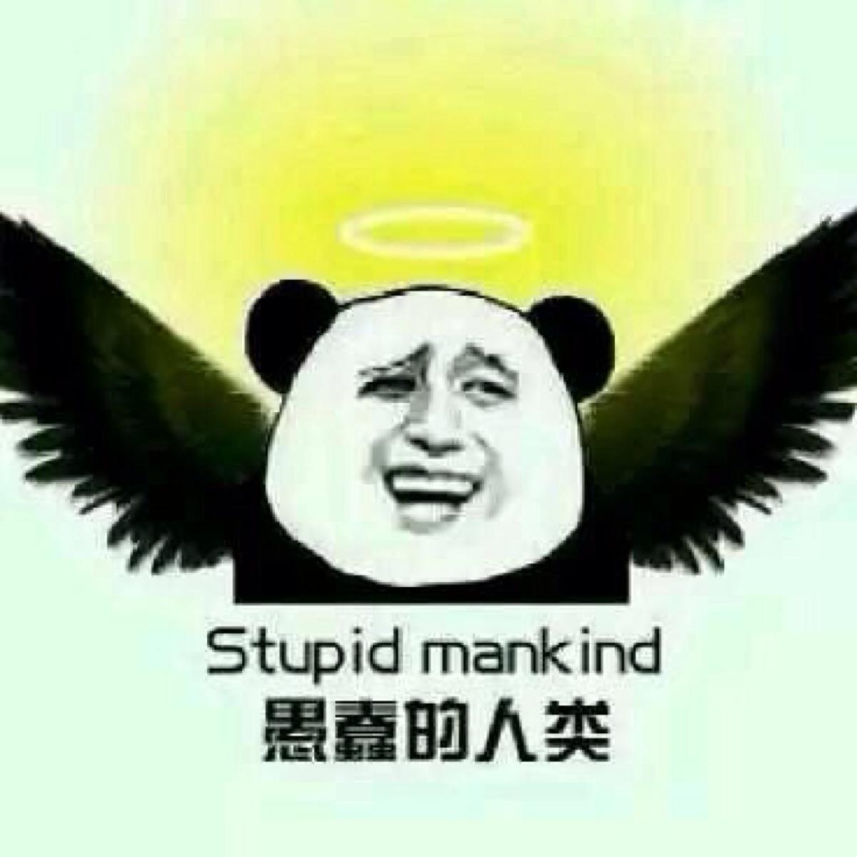 金馆长熊猫表情拿辣条图片 金馆长熊猫表情,金馆长熊猫表情高清图片